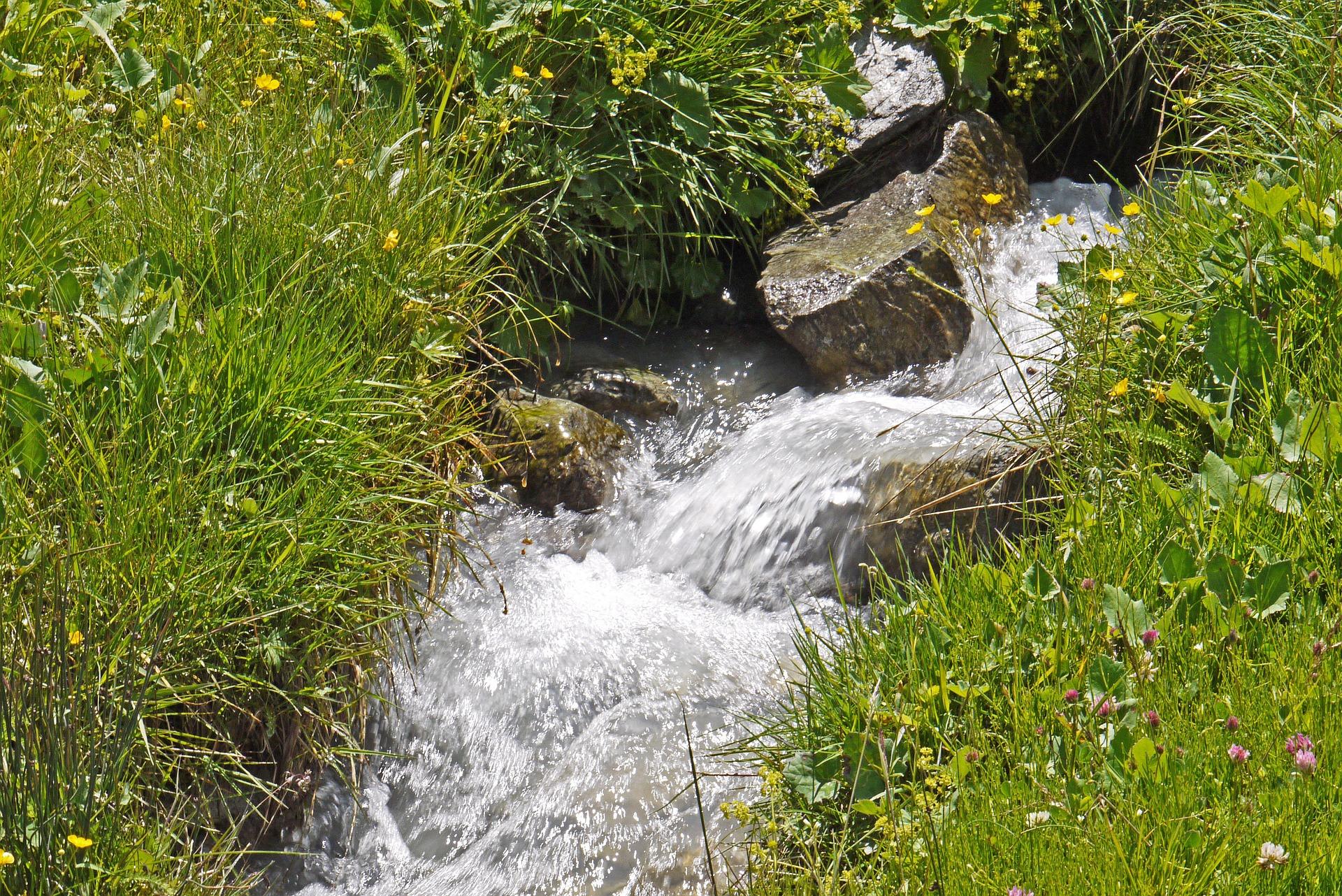 Quellwassersprudeln