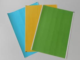 Rückenschilder SKB-E grün (VPE 5 Bögen)